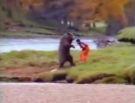 bear vs fisherman
